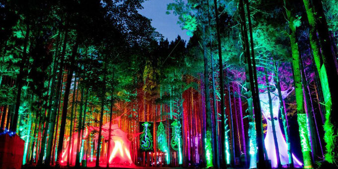 Photo 12Electric-Forest-Festival