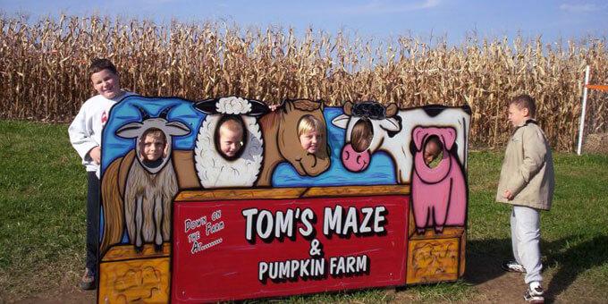 Photo 12Toms-Maze-and-Pumpkin-Far