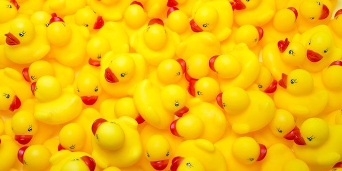 Photo 15Rubber-Ducky-Festival