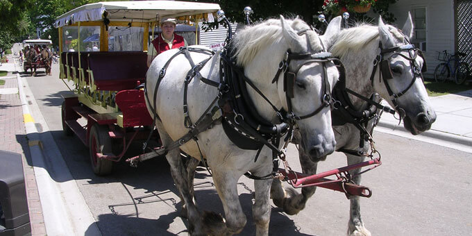 Photo 1Mackinac-Island-carriage-r