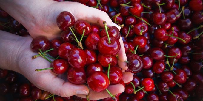 Photo 28National-Cherry-Festival
