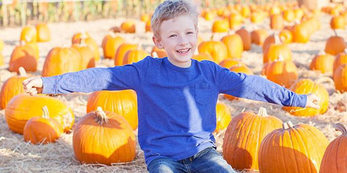 pumpkin patch williamsport pa