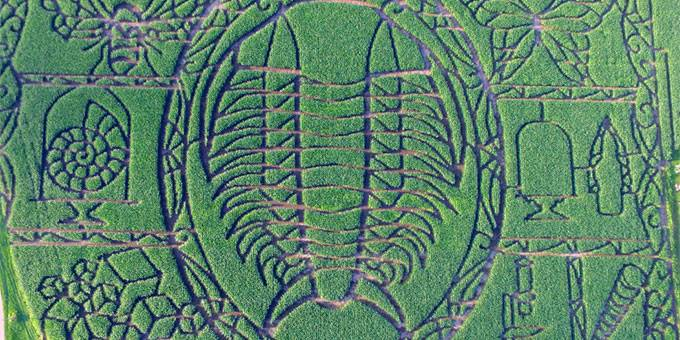 10 magical mazes of maize in wisconsin
