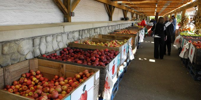 Photo 5The-Cider-Mill