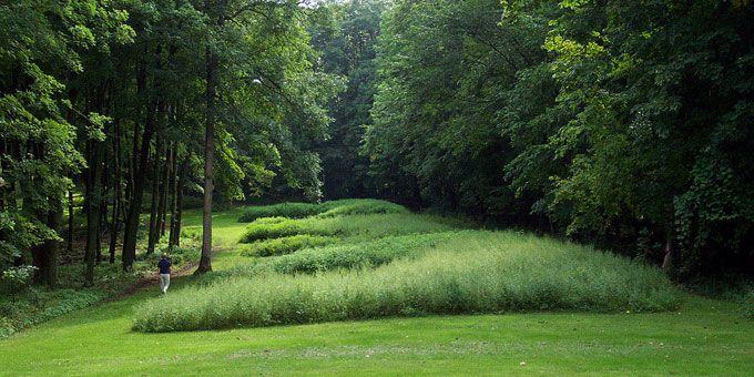 Photo 6Effigy-Mounds