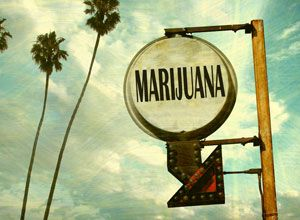 Photo marijuanaSign1