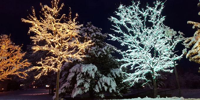 Jellystone Park Nashville Christmas Lights