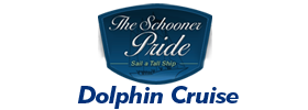 Charleston Dolphin Cruise Aboard The Schooner Pride