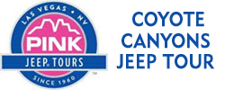 Coyote Canyons Jeep Tour
