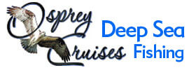 Deep sea fishing charter in south padre island texas for Deep sea fishing south padre island