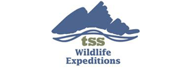 Grand Teton National Park Wildlife Discovery Expedition