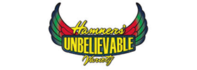 Hamners' Unbelievable Family Variety Show