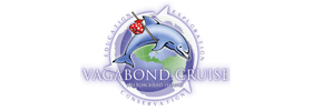 Hilton Head Dolphin Cruises