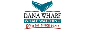 Anaheim Dolphin & Whale Watching Cruise