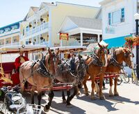Mackinac Island Carriage Tours Photo
