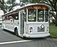 Savannah Historic Trolley Tour Photo