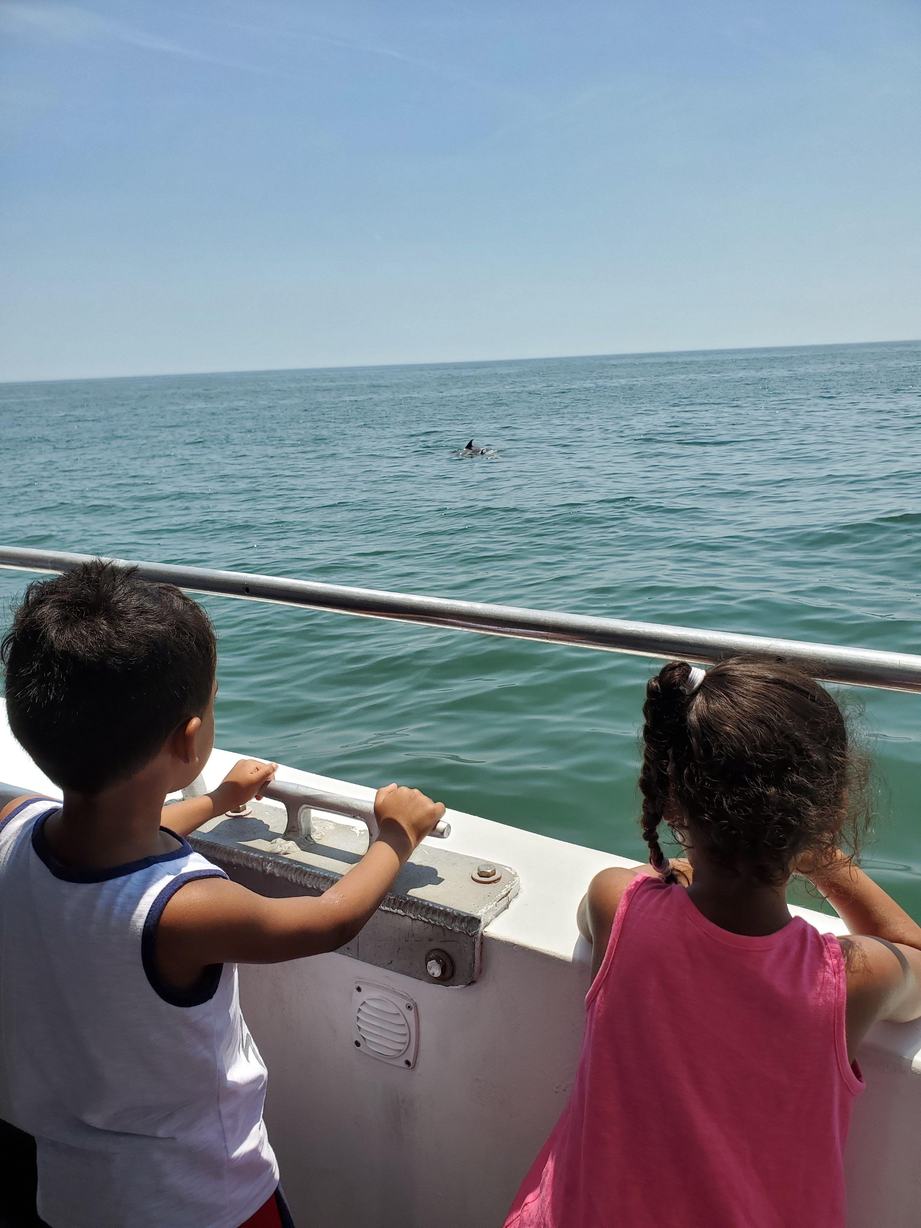 Kids Watching Dolphins on the Atlantic City Dolphin Watching Cruise
