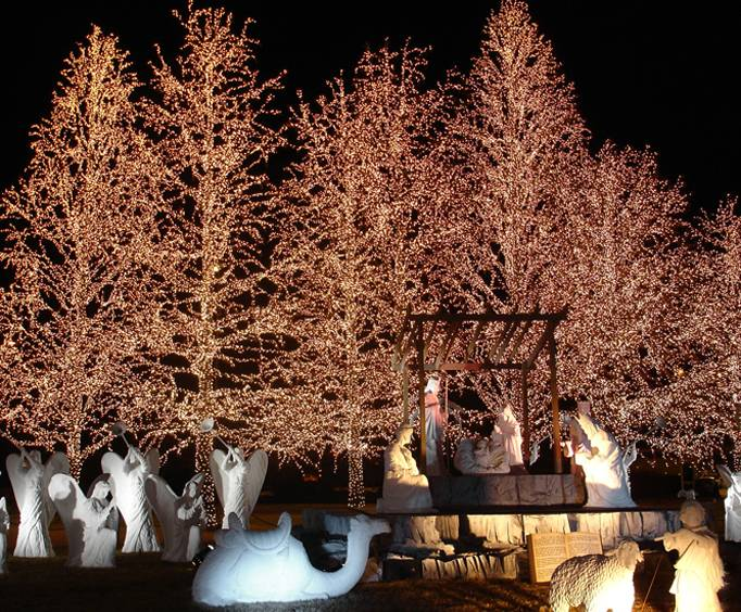 - Dancing Lights Of Christmas At Jellystone Park In Nashville, TN