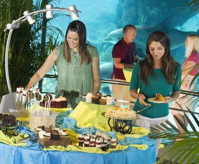 Image result for seven seas food festival seaworld orlando