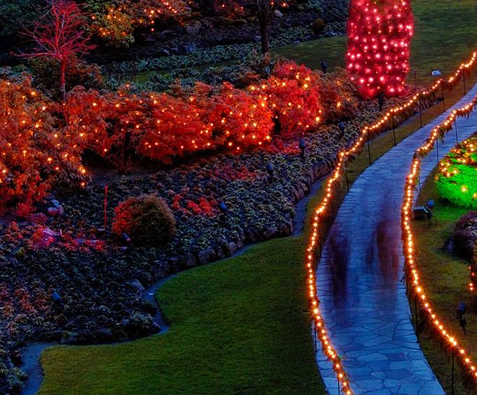Rock citys enchanted garden of lights