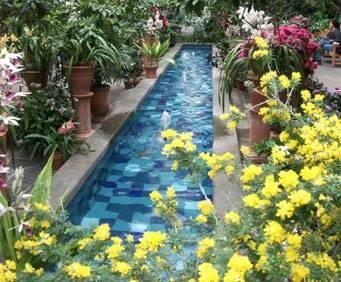U S Botanic Garden In Washington Dc