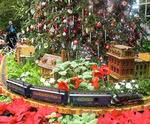 U.S. Botanic Garden in Washington, DC, Christmas