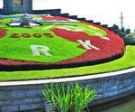 2005 Floral Clock