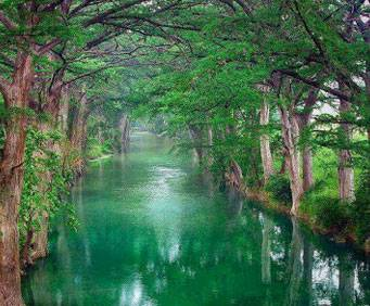 Medina River Park In San Antonio Tx