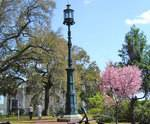 Old Harbor Light & Oglethorpe Bench in Savannah, GA