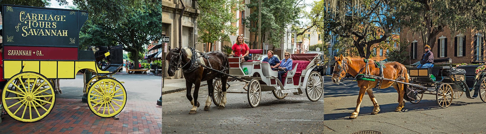 Savannah Carriage Tours in Savannah, GA