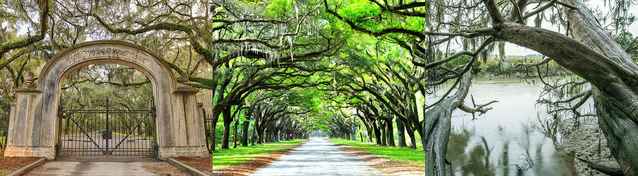 Wormsloe Historic Site in Savannah, GA