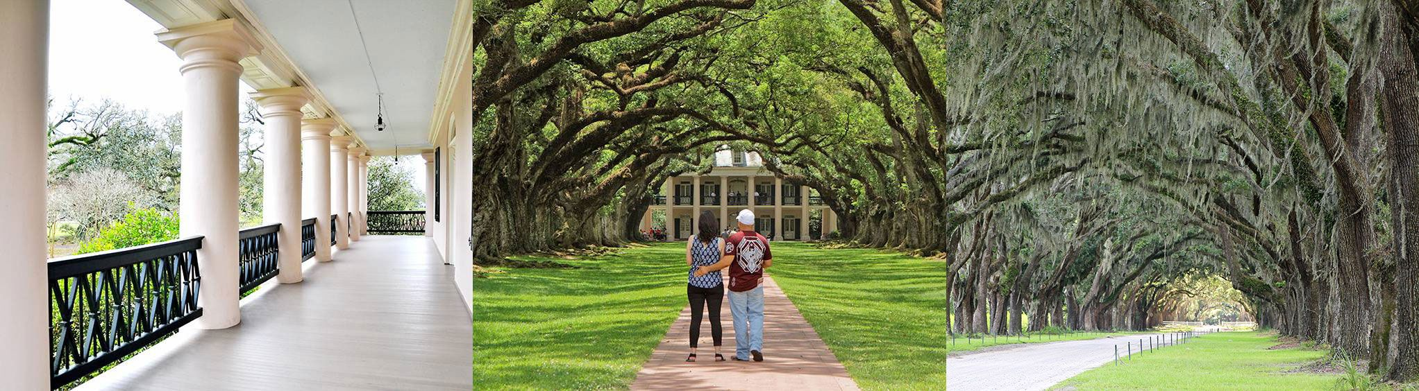 Oak Alley Plantation in Vacherie, LA near New Orleans, LA