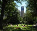 Central Park quad