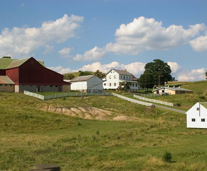 Amish Country Tours