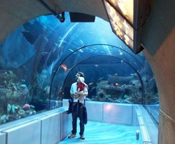 Aquarium of niagara in niagara falls ny