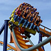 Kings Dominion Theme Park Vacation Package