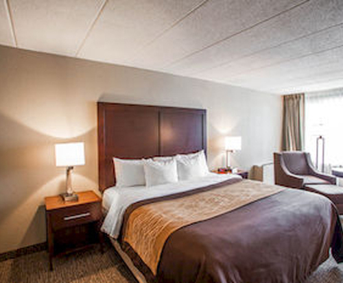 Room Photo for Comfort Inn Orland Park