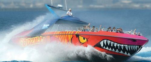 CodZilla Speedboat Adventure Tour, speed ride