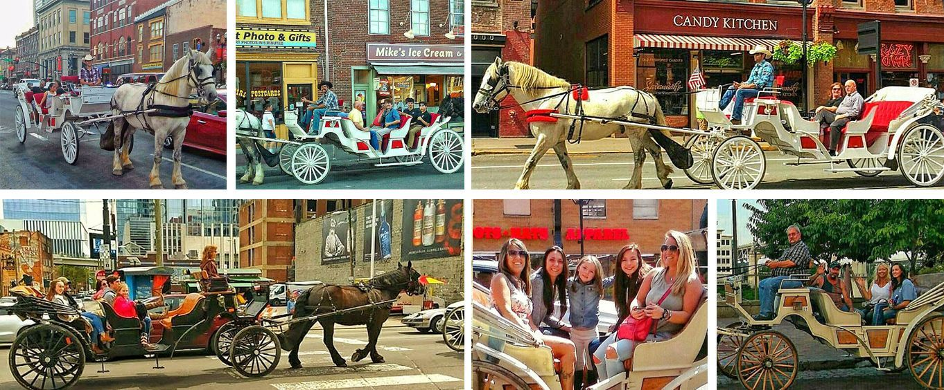20 Minute Downtown Carriage Tour Collage