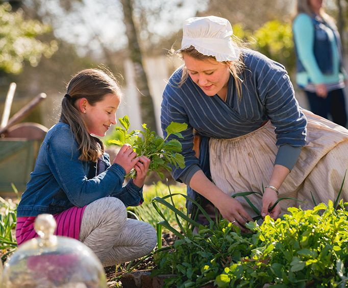 Tending Gardens at Colonial Williamsburg