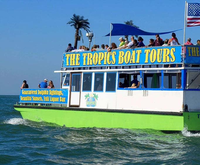 The Tropics Boat Tours Dolphin Encounter Tour