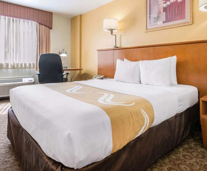 Room Photo for Quality Inn  Suites at Universal Studios