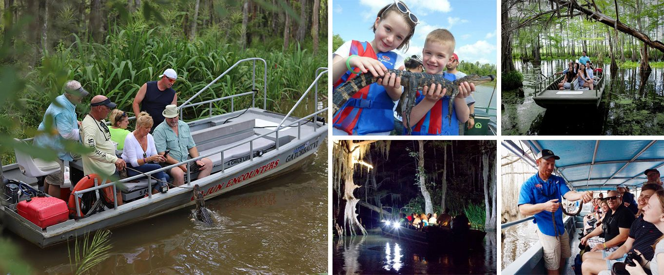 Have Fun on the Honey Island Swamp Tour