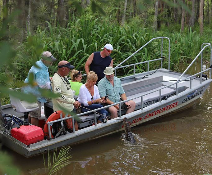 Small Boat and Alligator on the Honey Island Swamp Tour