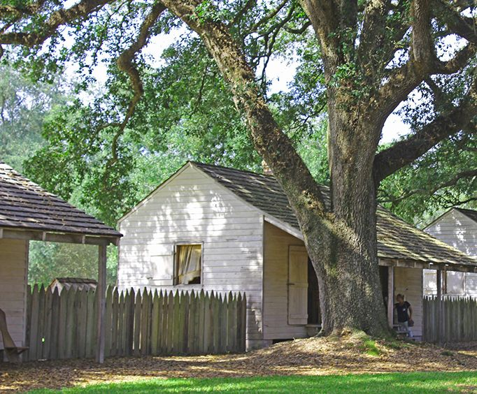 Old Homes on the Oak Alley and Laura Plantation Tour