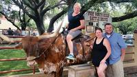 Get a photo on a longhorn