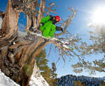 Salt Lake City Ski Package