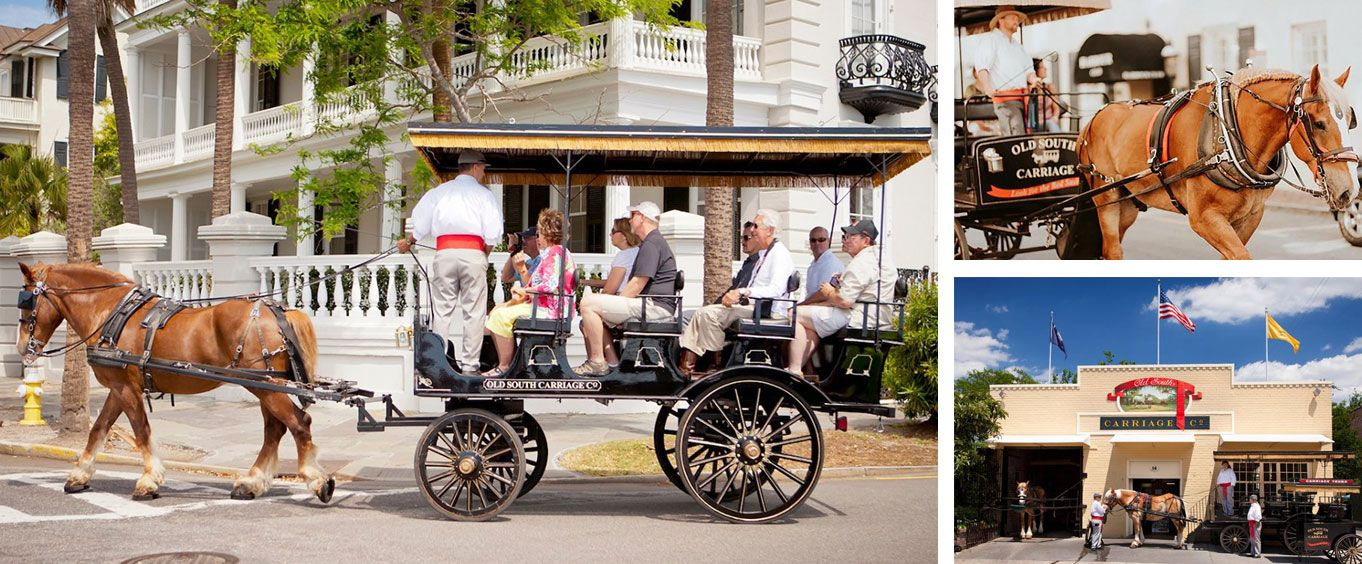 Explore with Charleston Carriage Tour of Antebellum Mansions Churches and Gardens