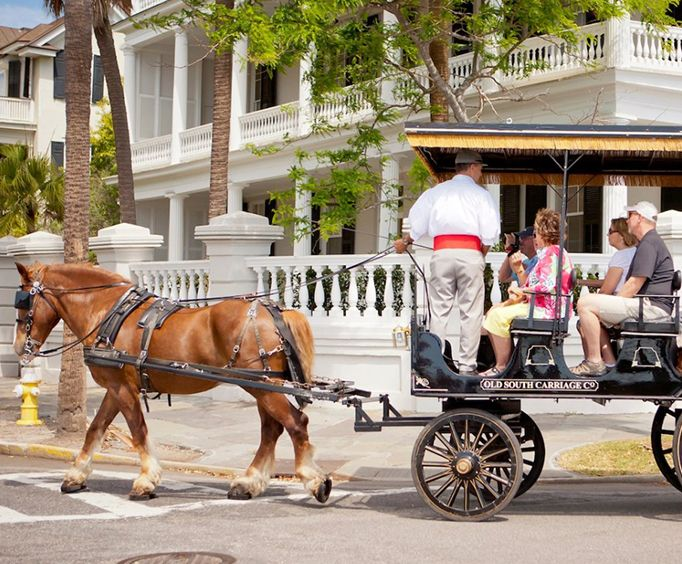 See Charleston with the Charleston Carriage Tour of Antebellum Mansions, Churches and Gardens