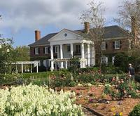 Boone Hall Plantation Bus Tour